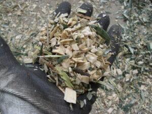 agrinova cippato qualita cippatori biotrituratori 08