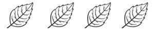 aspirafoglie divisore
