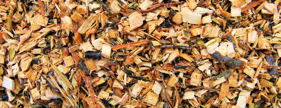 cippato energia dalle biomasse
